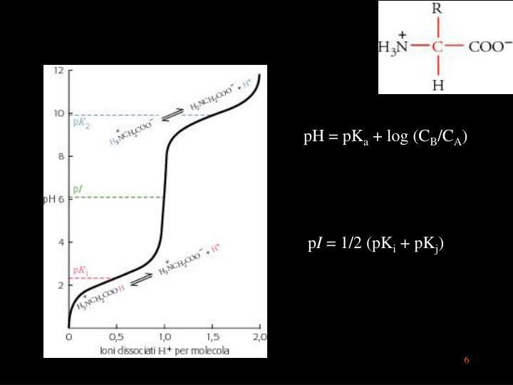 pH = pK