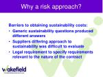 why a risk approach