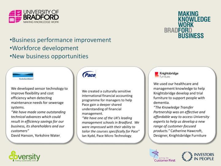Business performance improvement