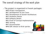 the overall strategy of the work plan
