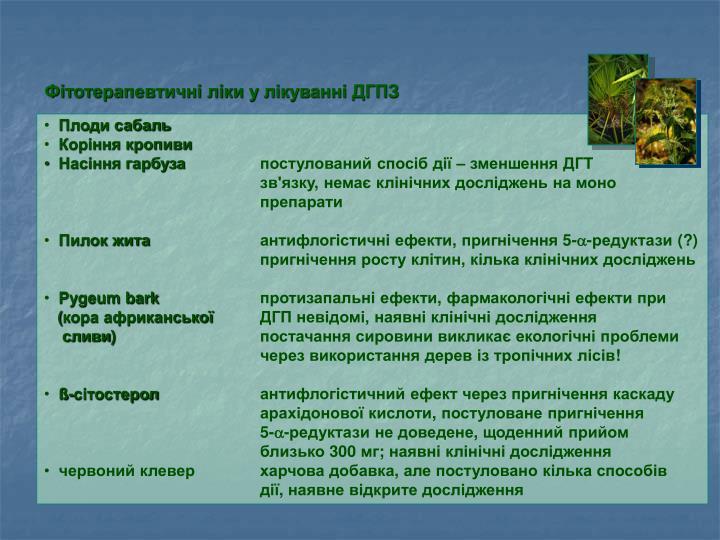 Фітотерапевтичні ліки у лікуванні ДГПЗ