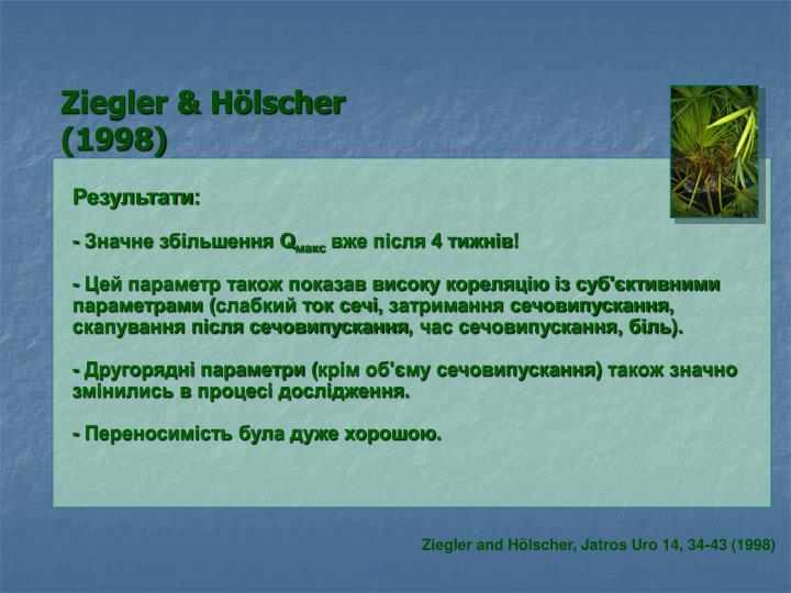 Ziegler & Hölscher (1998)