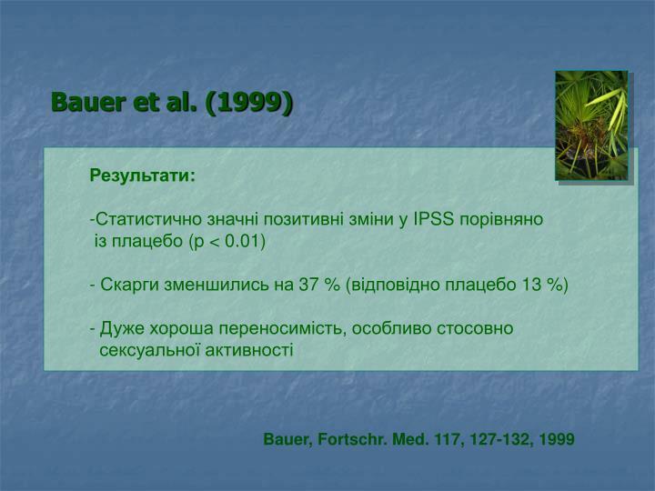 Bauer et al. (1999)