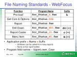 file naming standards webfocus