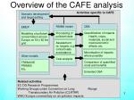 overview of the cafe analysis