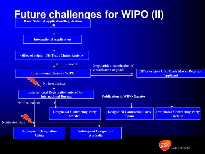 Future challenges for WIPO (II)