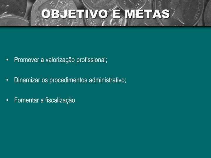 OBJETIVO E METAS