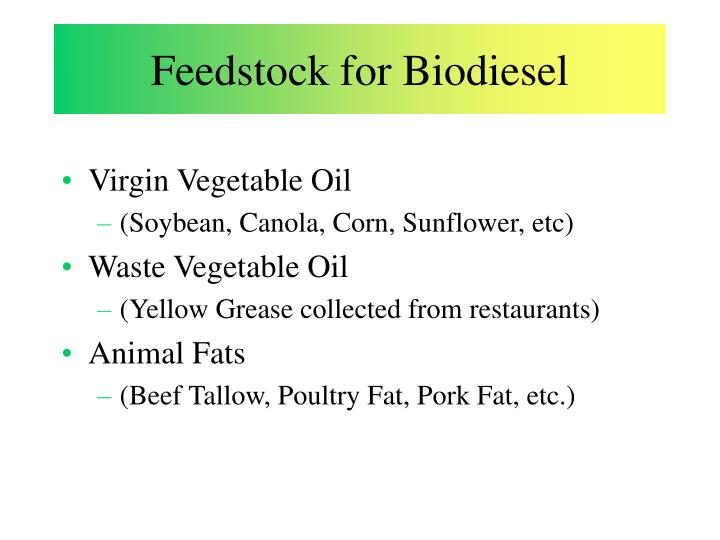 Feedstock for Biodiesel