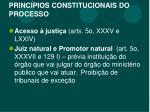 princ pios constitucionais do processo