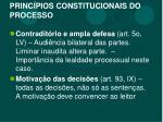 princ pios constitucionais do processo2