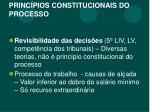 princ pios constitucionais do processo3