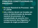 princ pios constitucionais do processo4