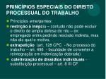 princ pios especiais do direito processual do trabalho4