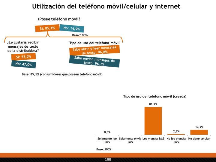 Utilización del teléfono móvil/celular y internet
