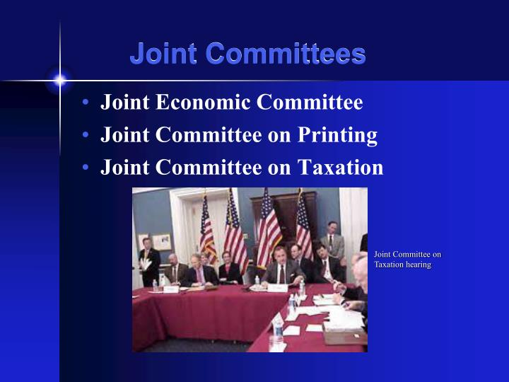 Joint Committees