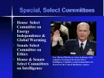special select committees