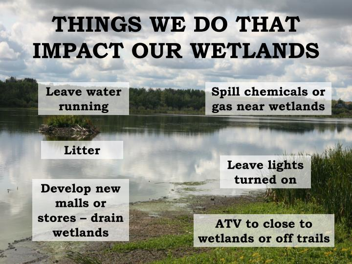 THINGS WE DO THAT IMPACT OUR WETLANDS
