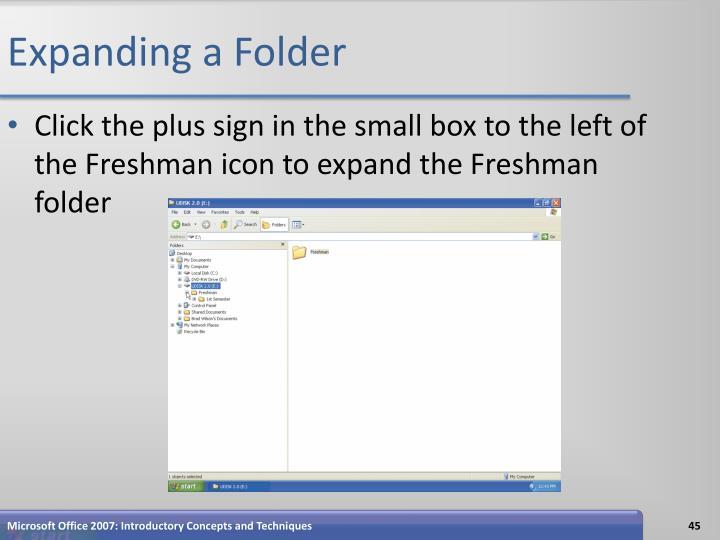 Expanding a Folder