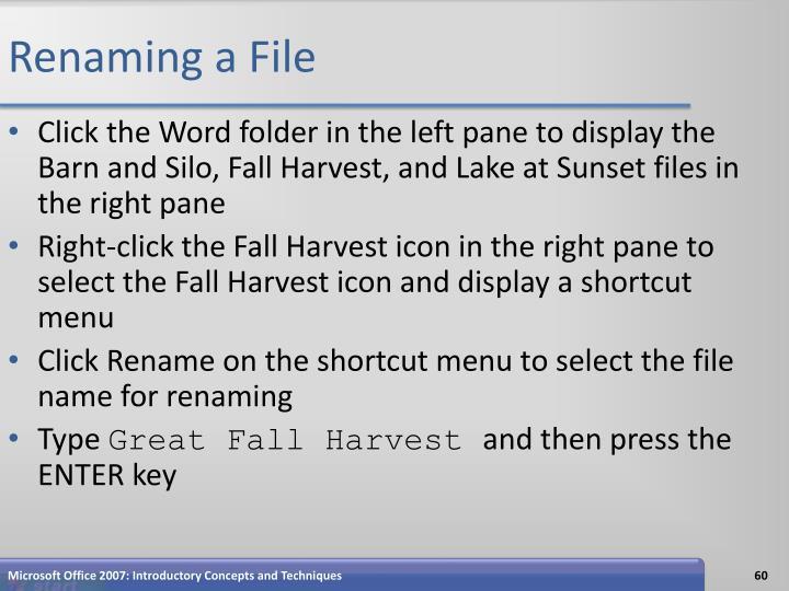 Renaming a File