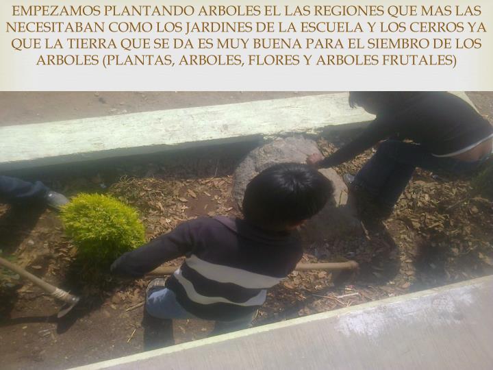 EMPEZAMOS PLANTANDO ARBOLES EL LAS REGIONES QUE MAS LAS NECESITABAN COMO LOS JARDINES DE LA ESCUELA Y LOS CERROS YA QUE LA TIERRA QUE SE DA ES MUY BUENA PARA EL SIEMBRO DE LOS ARBOLES (PLANTAS, ARBOLES, FLORES Y ARBOLES FRUTALES)