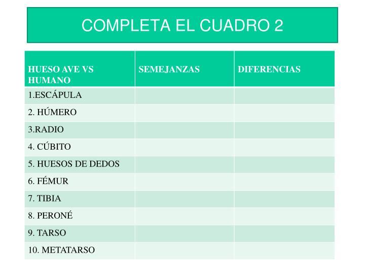 COMPLETA EL CUADRO 2