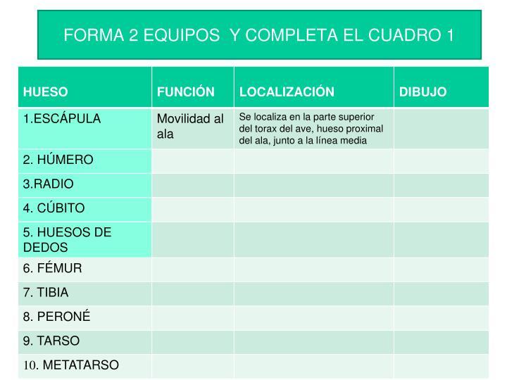 FORMA 2 EQUIPOS  Y COMPLETA EL CUADRO 1