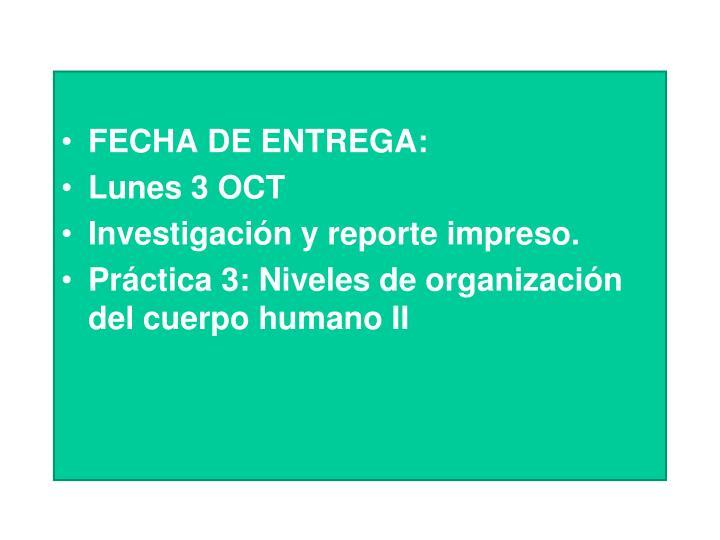 FECHA DE ENTREGA:
