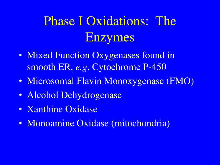Phase I Oxidations:  The Enzymes