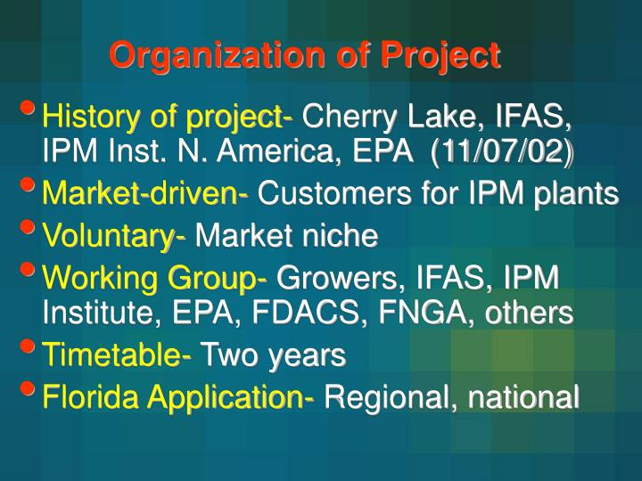 Organization of Project