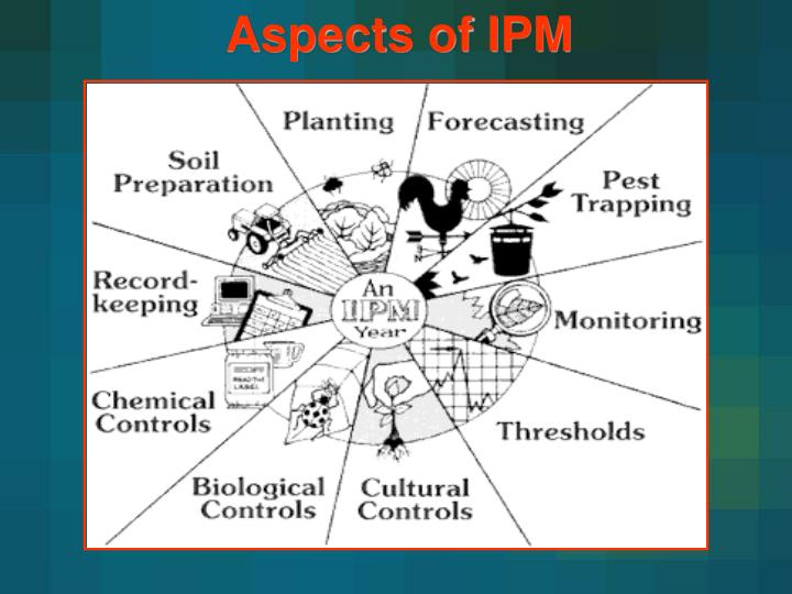 Aspects of IPM