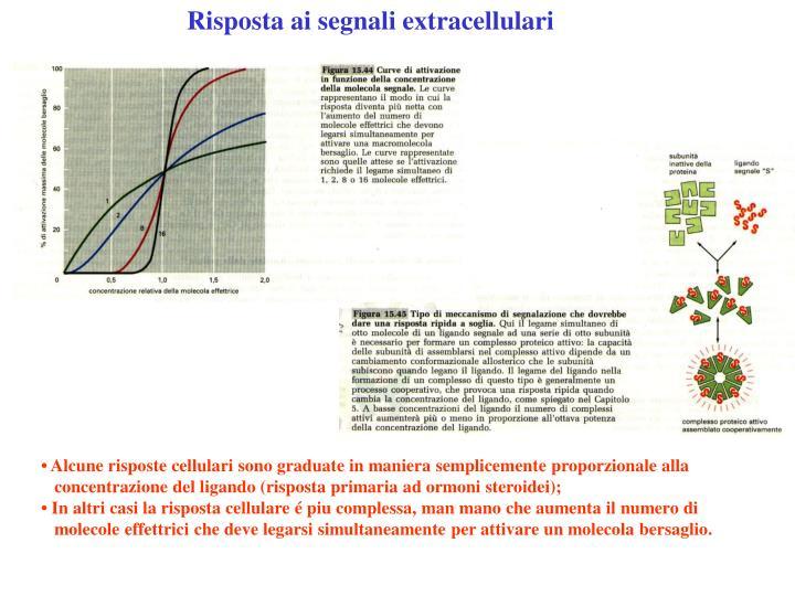 Risposta ai segnali extracellulari