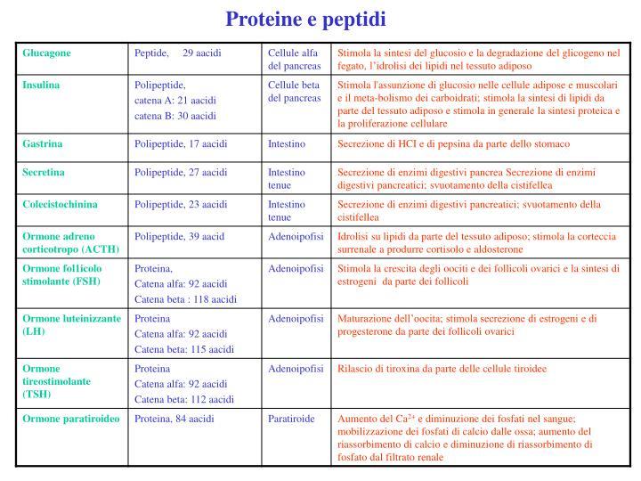 Proteine e peptidi