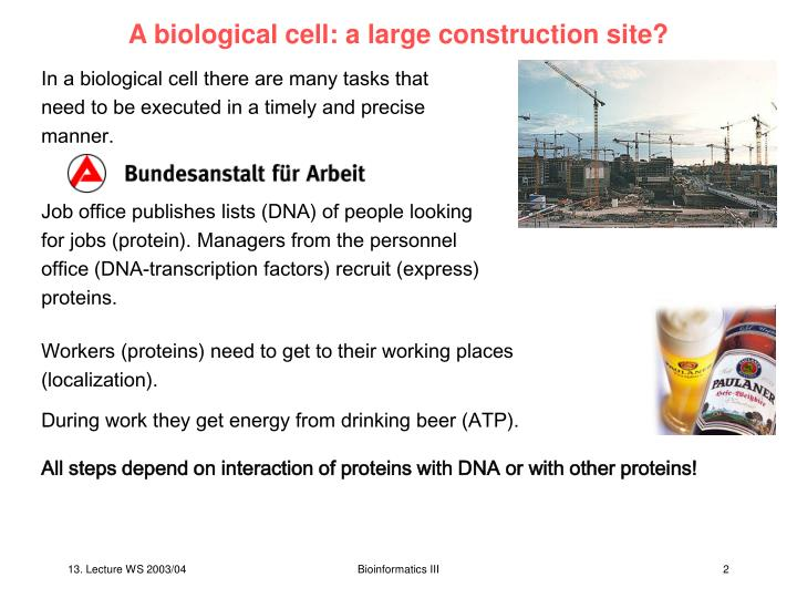 A biological cell: a large construction site?