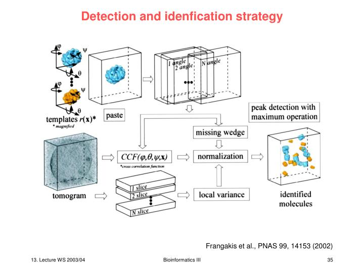 Detection and idenfication strategy