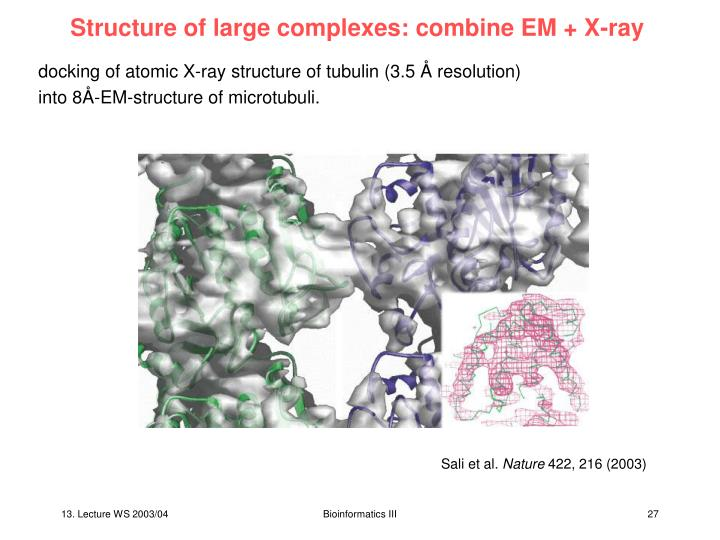 Structure of large complexes: combine EM + X-ray