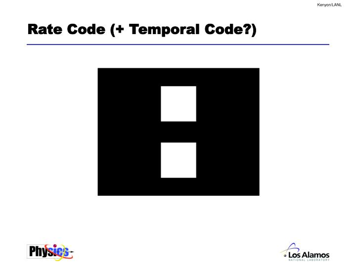 Rate Code (+ Temporal Code?)