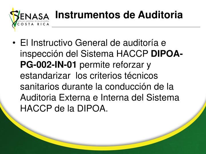 Instrumentos de Auditoria