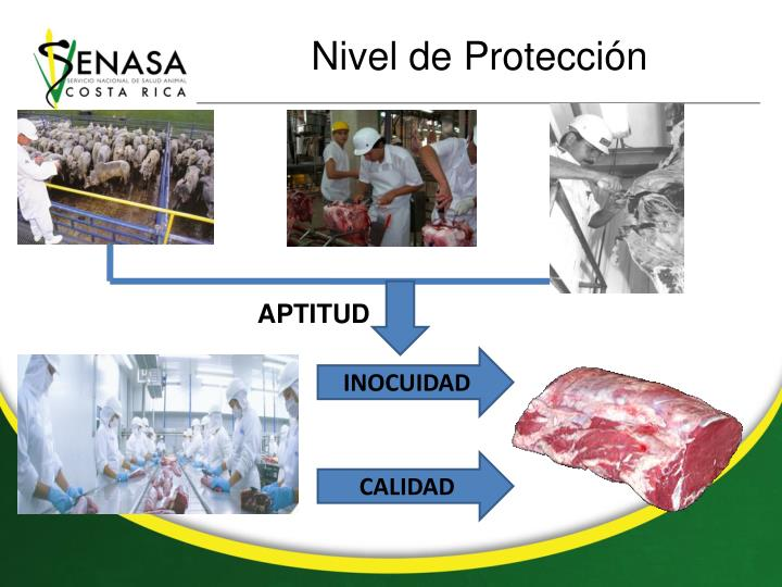 Nivel de Protección