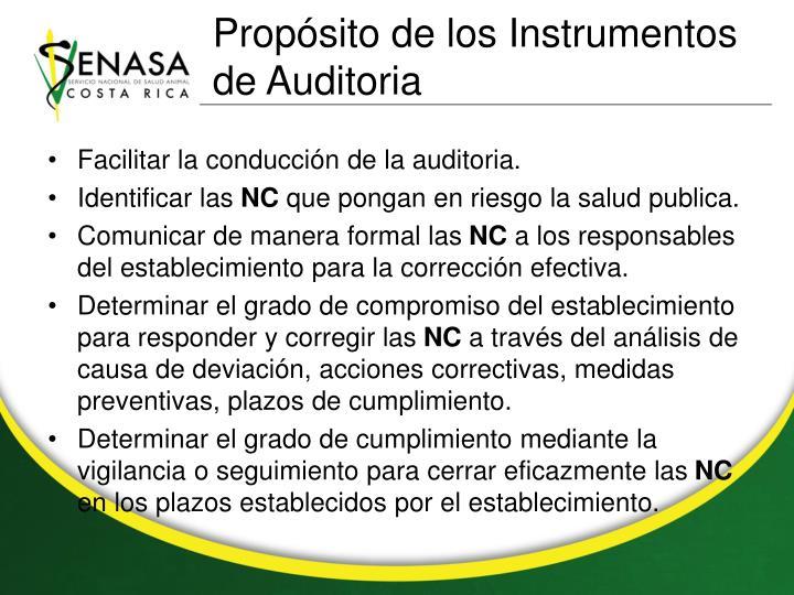 Propósito de los Instrumentos de Auditoria
