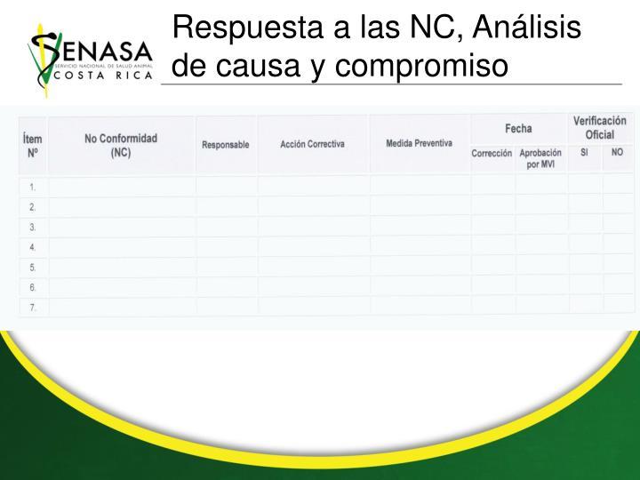 Respuesta a las NC, Análisis de causa y compromiso