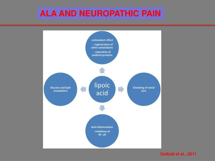 ALA AND NEUROPATHIC PAIN