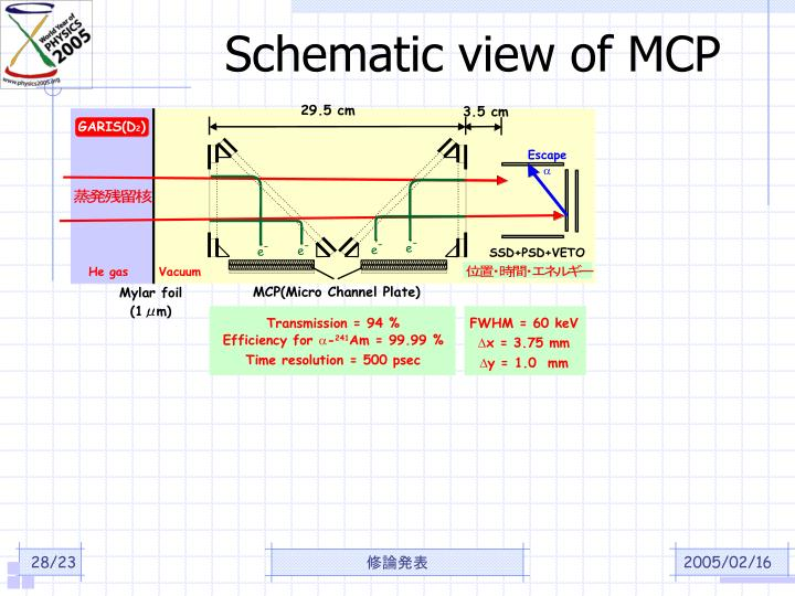Schematic view of MCP