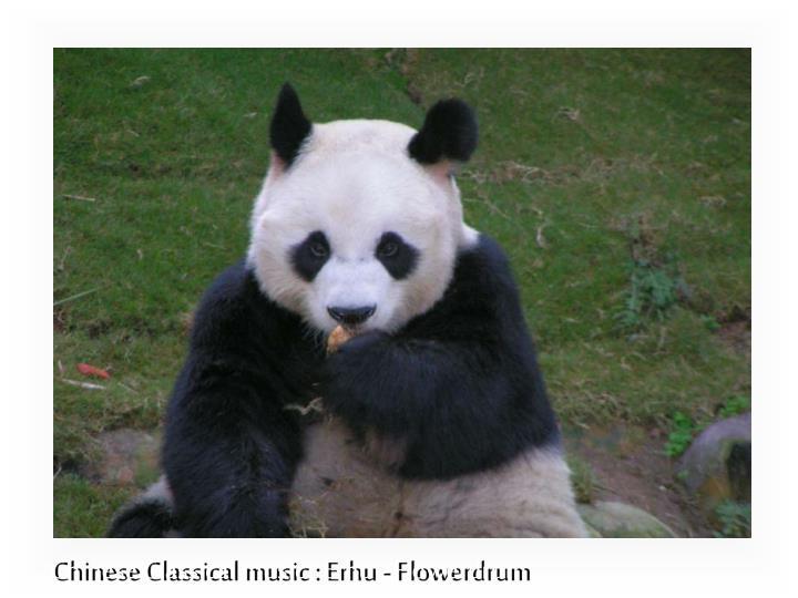 Chinese Classical music : Erhu - Flowerdrum