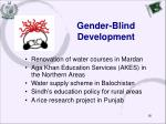 gender blind development