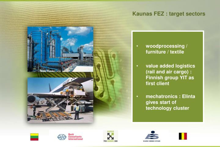 Kaunas FEZ : target sectors