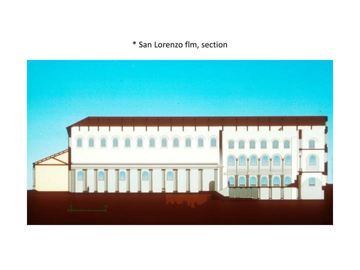 * San Lorenzo flm, section