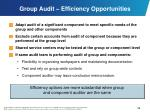 group audit efficiency opportunities