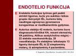 endotelio funkcija