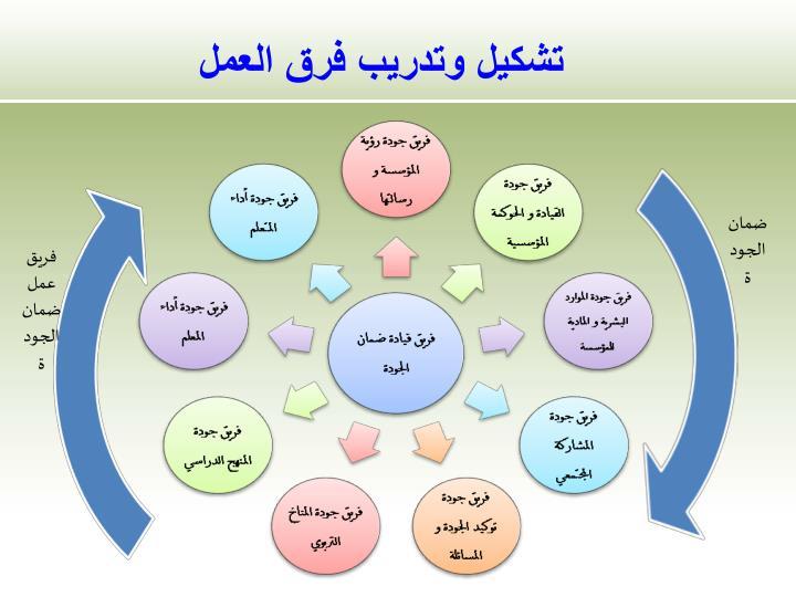 تشكيل وتدريب فرق العمل