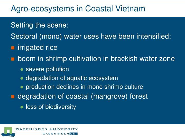 Agro-ecosystems in Coastal Vietnam